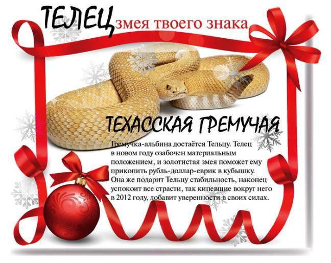ГОРОСКОПЫ ТЕМАТИЧЕСКИЕ 96067016