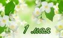 С 1 МАЯ - ОТКРЫТКИ 1-maya10