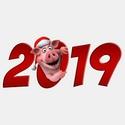 2019 ГОД-ЖЁЛТОЙ ЗЕМЛЯНОЙ СВИНЬИ 77312_10