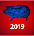 2019 ГОД-ЖЁЛТОЙ ЗЕМЛЯНОЙ СВИНЬИ Christ30