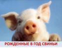 2019 ГОД-ЖЁЛТОЙ ЗЕМЛЯНОЙ СВИНЬИ Full_m10