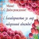 С Днём Рожденья МАМА Mama0023