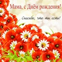 С Днём Рожденья МАМА Mama0029
