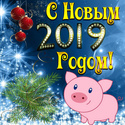 2019 ГОД-ЖЁЛТОЙ ЗЕМЛЯНОЙ СВИНЬИ Newyea14