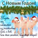 2019 ГОД-ЖЁЛТОЙ ЗЕМЛЯНОЙ СВИНЬИ Newyea15