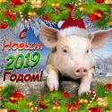 2019 ГОД-ЖЁЛТОЙ ЗЕМЛЯНОЙ СВИНЬИ Newyea17