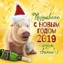 2019 ГОД-ЖЁЛТОЙ ЗЕМЛЯНОЙ СВИНЬИ Noviy-10