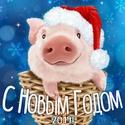 2019 ГОД-ЖЁЛТОЙ ЗЕМЛЯНОЙ СВИНЬИ Otkrut12