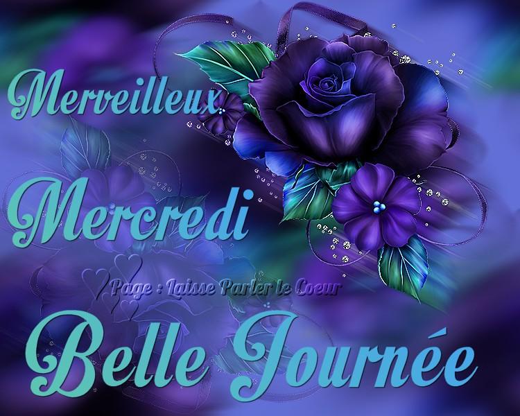 Bonjour du jour et bonsoir du soir Mercre15
