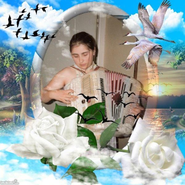 Montage de ma famille - Page 4 30439411