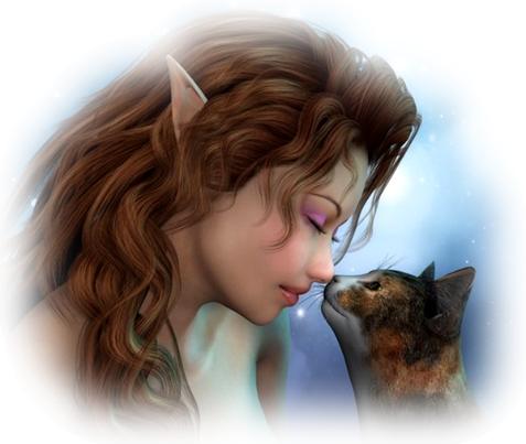 Les fées des chats 18274810