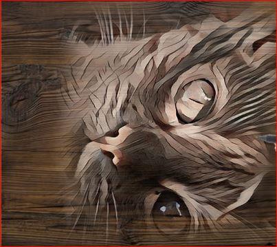 Photo de vos chats gravé dans le bois Muesli10