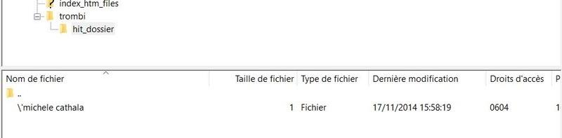 Effacer un fichier récalacitrant sur FileZilla Filezi10
