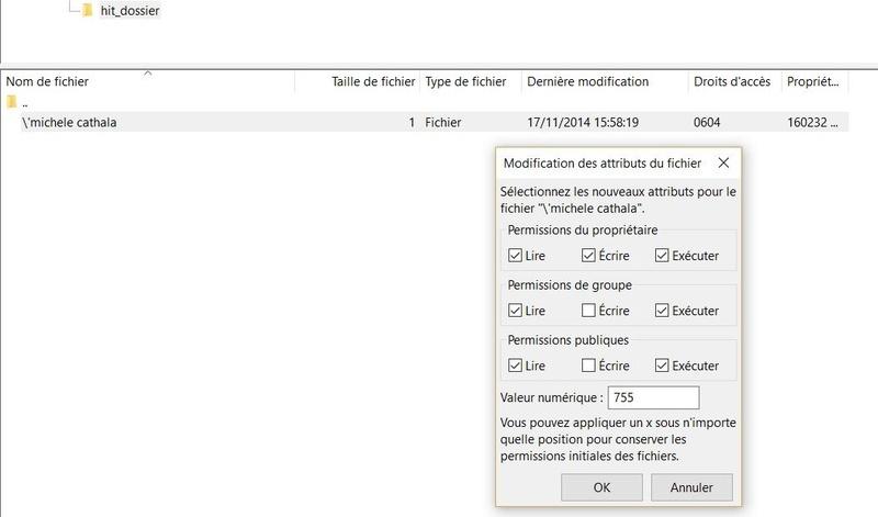 Effacer un fichier récalacitrant sur FileZilla Filezi11