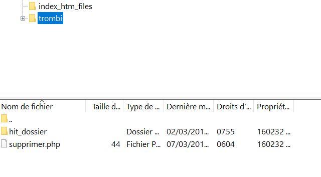 Effacer un fichier récalacitrant sur FileZilla Suppri10