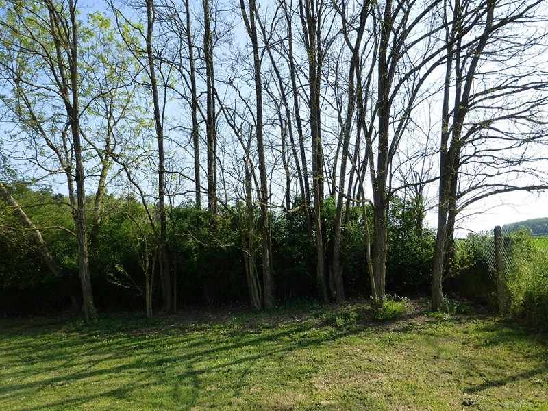 """Images partagées d'espaces jardins """"naturels"""", sans poisons. Chez_f10"""