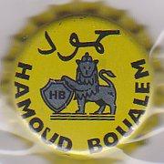 Nouveau logo Hamoud Boualem Hamoud10