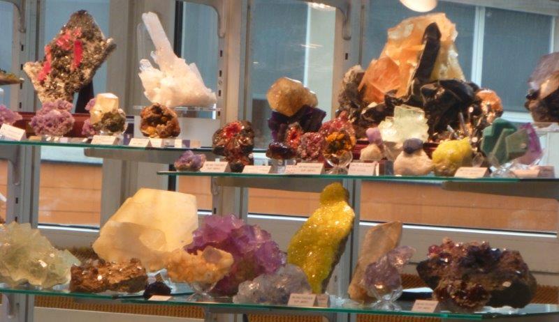 Expositionn minéraux fossiles insectes  18_mar13