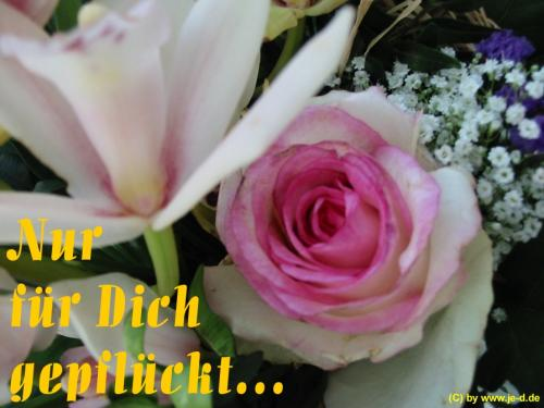 Happy Birthday, liebe Lucky!  Blumen10