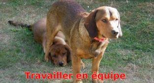 joyeux noel Pour_m10