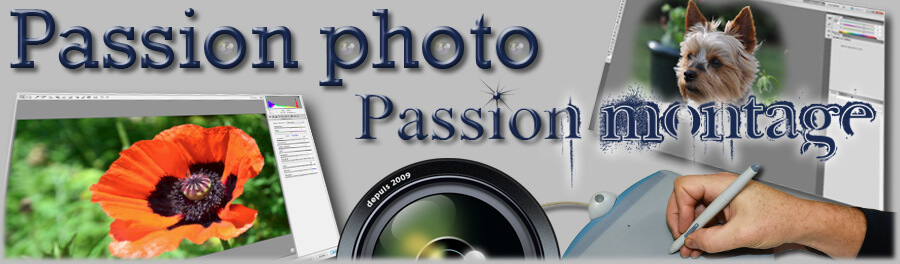 passion photo passion montage