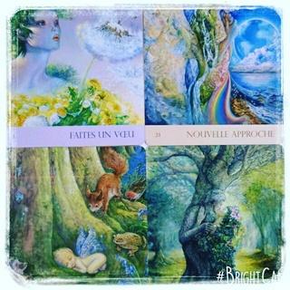 Murmures de la nature : Cartes oracle 16681710