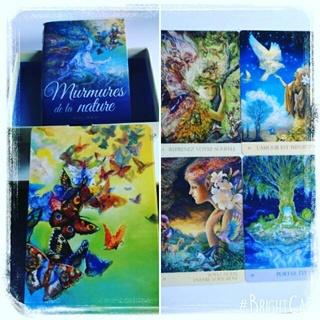Murmures de la nature : Cartes oracle 16831810