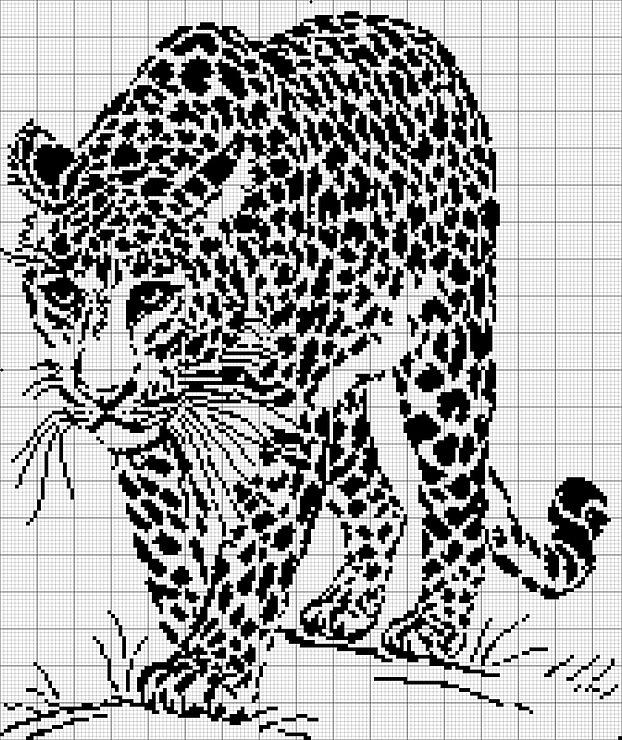 léopard broderie 29524610