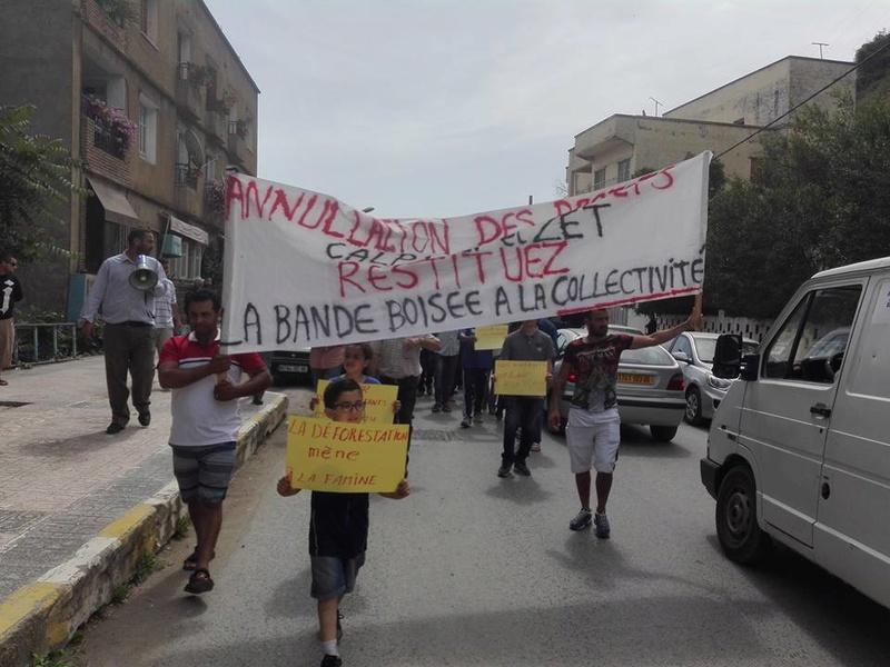 Marche à Aokas contre la destruction de la bande boisée le lundi 22 mai 2017 316