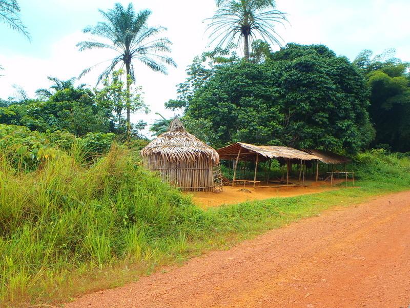 PP à Lomé 2017 - Page 3 P6040117