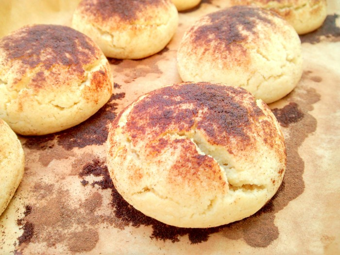 Biscoitos de Canela Biscoi13
