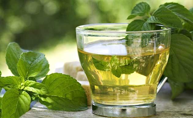 Chá para azia e má digestão Cha-ho10