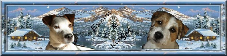 Banniére pour signature - Page 17 80636810