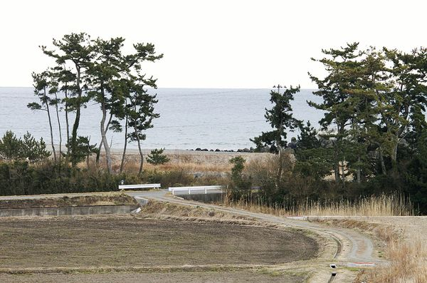 Photos et vidéos insolites - Page 13 Tsunam10