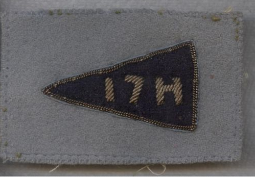 HLI 3rd division patch/flash? 17_h10