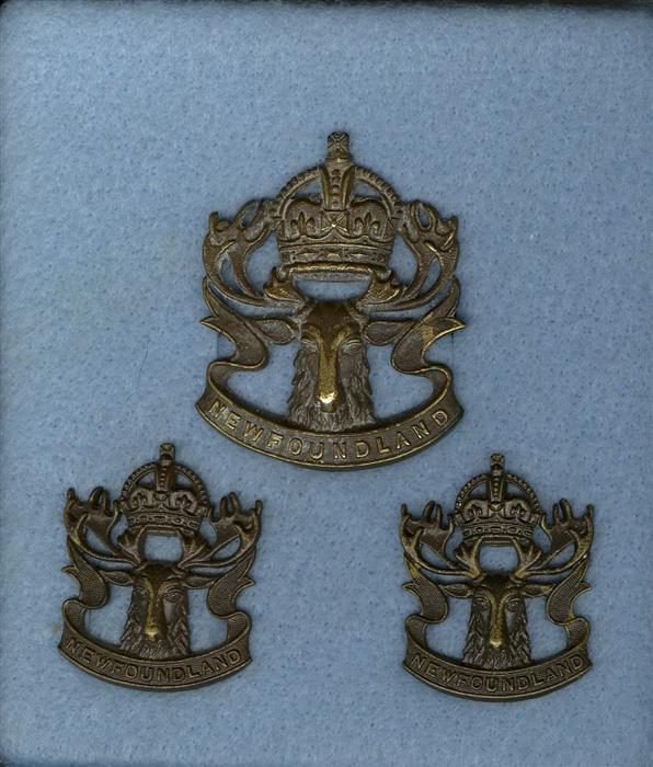 Winnipeg Grenadiers and Royal Rifles of Canada and Newfoundland Regiment Newfou10