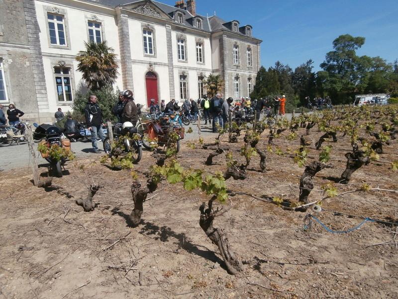 Retro Cyclos 2017 - Sortie Mobylettes et Solex au départ des Sorinières (44) le 23 Avril P4230025