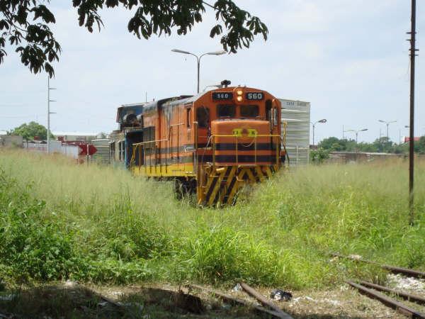Yucatan, Mexique Dsc02110