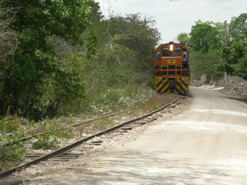 Yucatan, Mexique Dscn2216