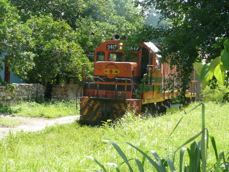 Yucatan, Mexique P1070311