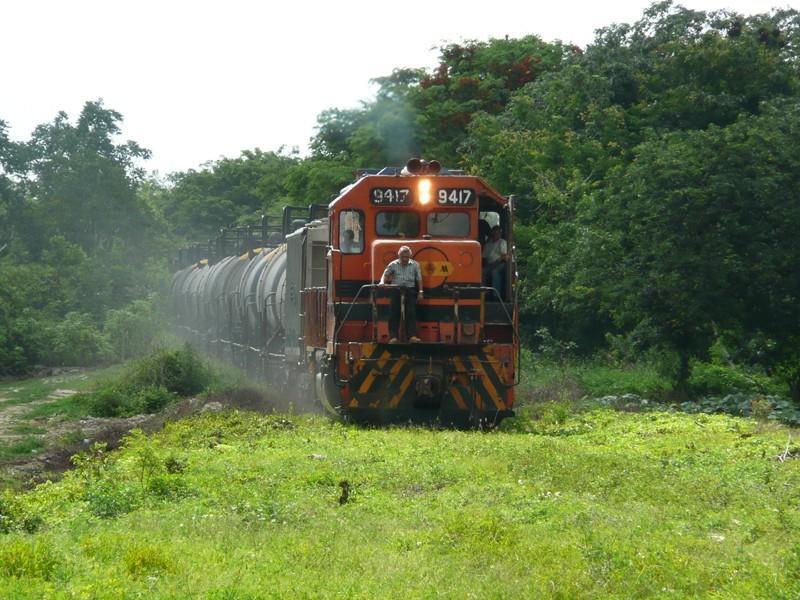 Yucatan, Mexique P1070316