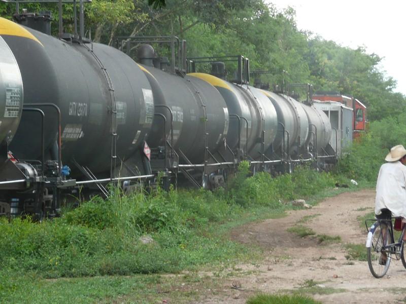 Yucatan, Mexique P1070322