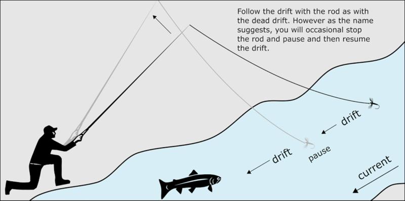 L'éphémère et la truite  Image710