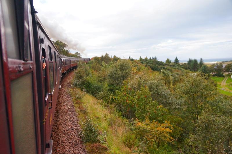Англия - Шотландия - мои впечатления... Dsc05510