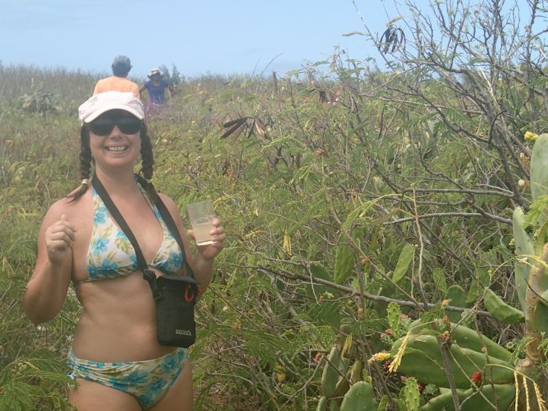 Furax file à Rodrigues en 2013 Pa130110