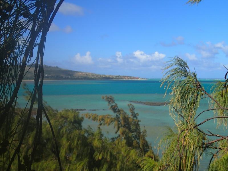 Furax file à Rodrigues en 2013 Pa130111