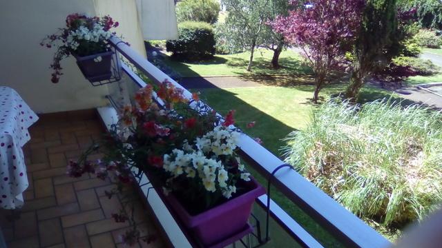 Un petit tour au jardin 35210
