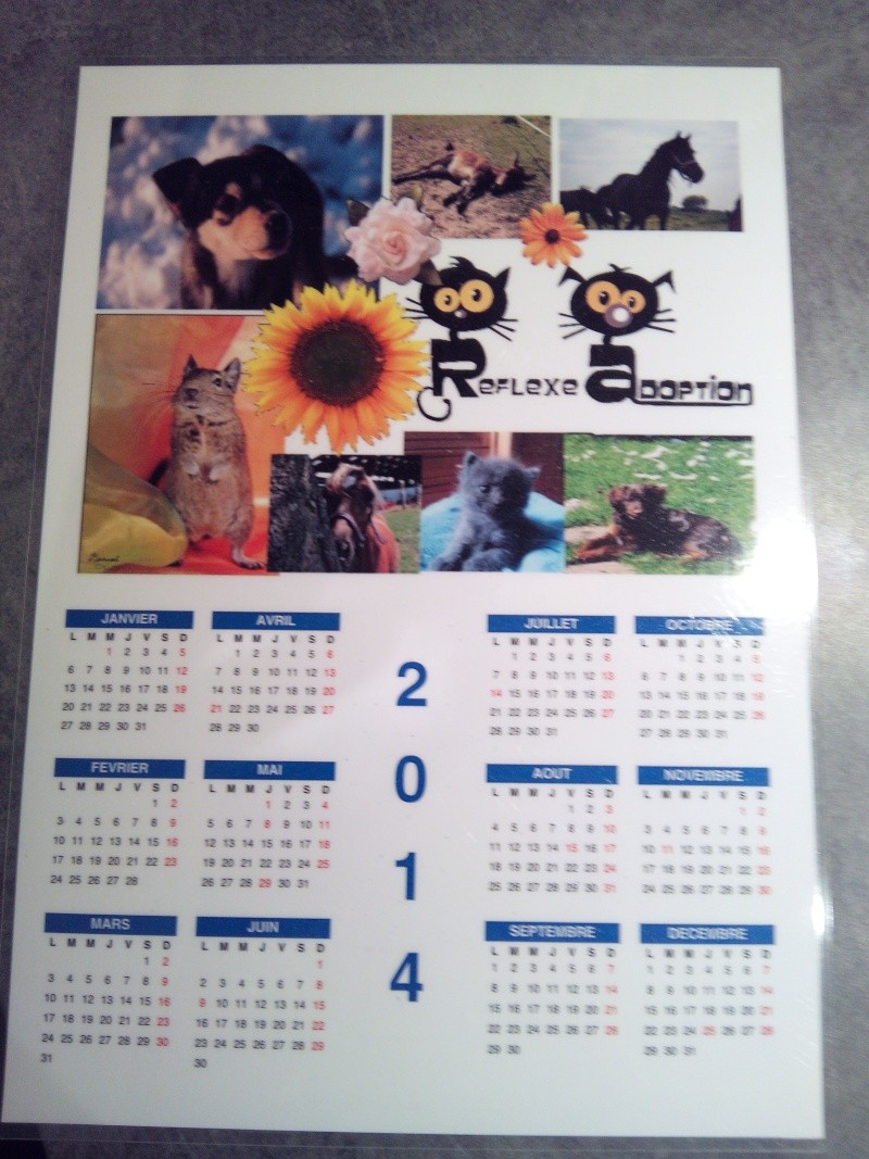 Le calendrier 2014 Img_2010