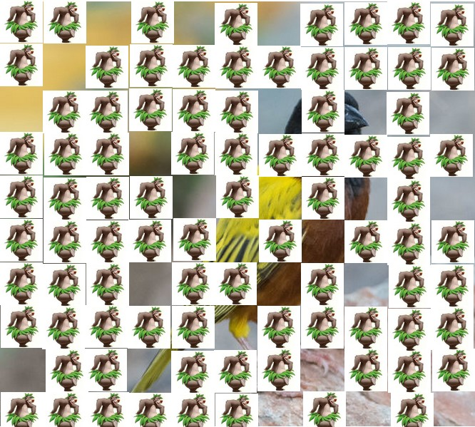 un oiseau à trouver Martin 20 mars trouvé par Martine - Page 2 Oiseau14