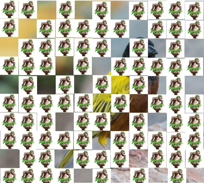 un oiseau à trouver Martin 20 mars trouvé par Martine - Page 2 Oiseau15